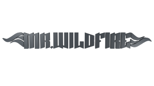 wildfire 3D